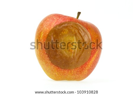 One bad red apple isolated on white background - stock photo