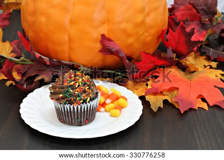 One chocolate cupcake decorated with fall sprinkles.  Cupcake in front of autumn decorations. - stock photo