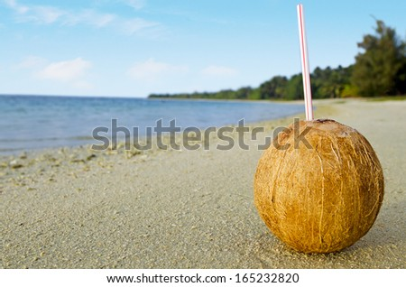 One coconut with a straw on sandy sea shore of tropical island. - stock photo