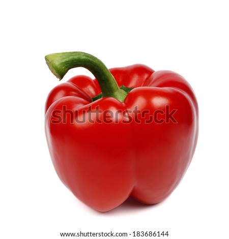 One colorful pepper isolated on white background - stock photo