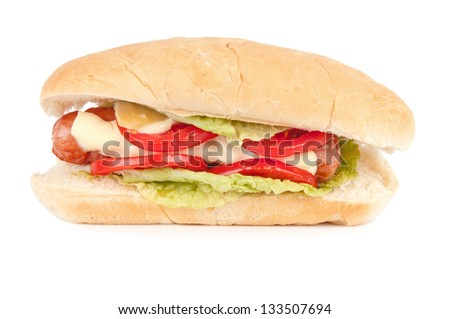 one delicious hot dog on a white background