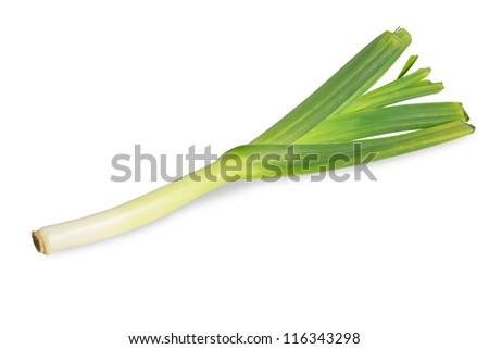 One fresh leek isolated on white background. - stock photo