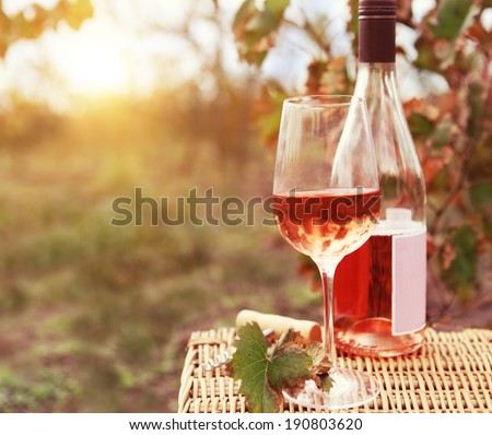 One glass and bottle of the rose wine in autumn vineyard. Harvest time - stock photo