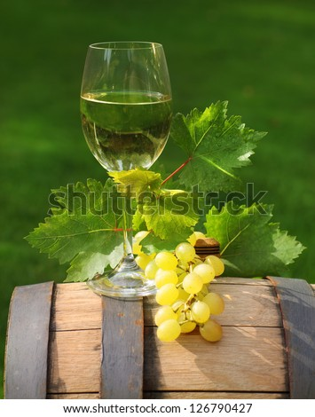One glass of white wine and green leaves of the grape on the wine barrel. Close up