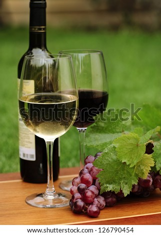 One glass of white wine and red wine and grapes with green leaves - stock photo