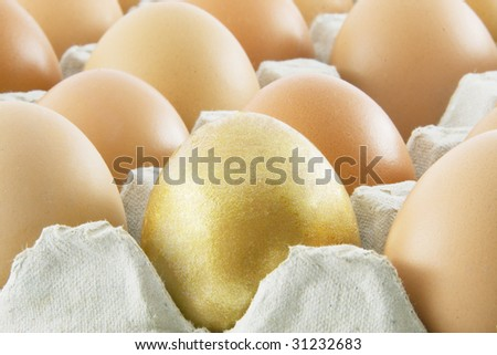 One golden egg with many ordinary fresh rural eggs - stock photo