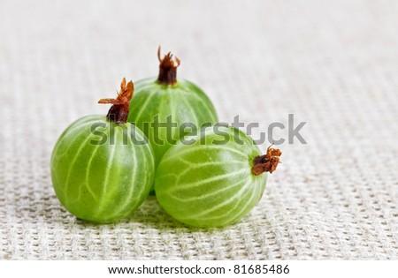 One gooseberry fruit, on gray linen table cloth, macro - stock photo