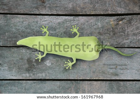one green, imagined genetically modified pepper with legs, as a result of animal molecules in it,  on gray wood background. - stock photo