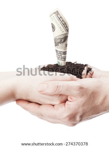 One hundred dollar bill growing like a plant inside cupped hands - stock photo