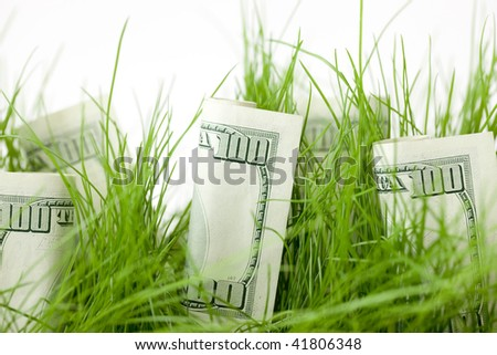 One Hundred Dollar Bills intermixed with Grass in a Pot - stock photo