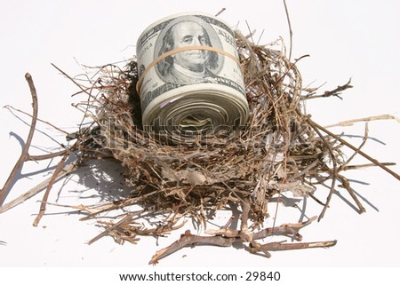 one hundred dollar bills rolled up and held by a rubber band in a bird nest representing finincial freedom and security in the image of a Nest Egg - stock photo