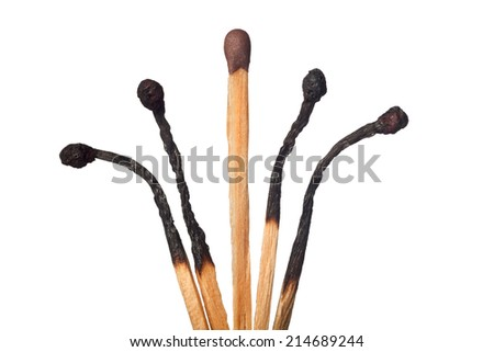 One intact matchstick in the middle of four burned out ones, isolated on white background  - stock photo