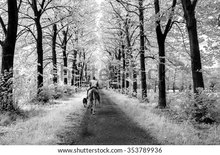 [Image: stock-photo-one-man-with-his-horse-and-d...789936.jpg]