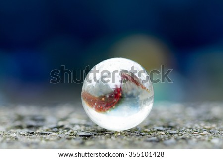 one marble on the sidewalk in close up. - stock photo
