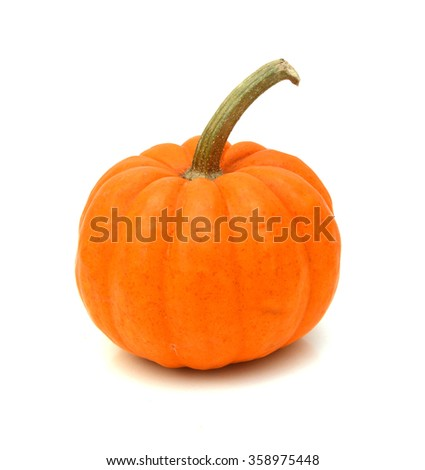 One mini pumpkin over white