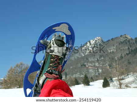 one modern snowshoe in the mountain - stock photo