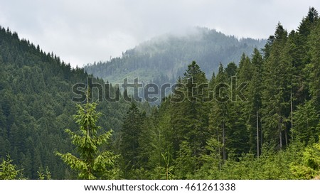 One of mountain vertex of Carpathians  in clouds