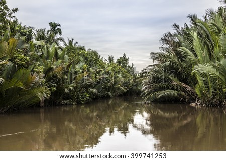 One of the thousands of small canals at the Mekong delta. On the sides are coconut plantations.