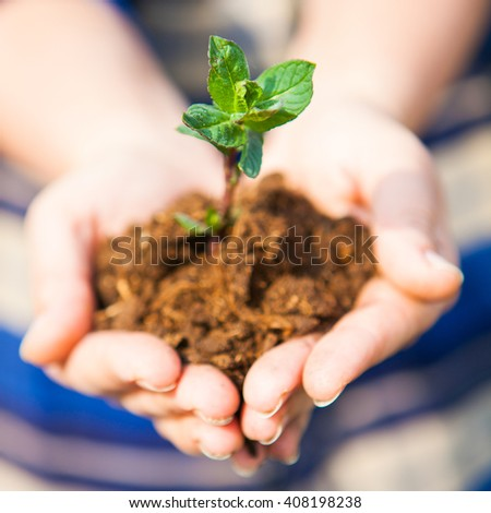 One plant in female hands. Earth Day. Spring and ecology concept - stock photo