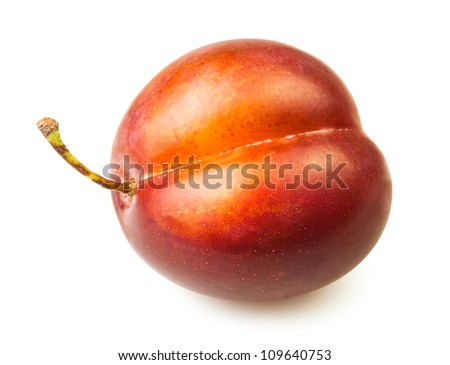 one plum on white background