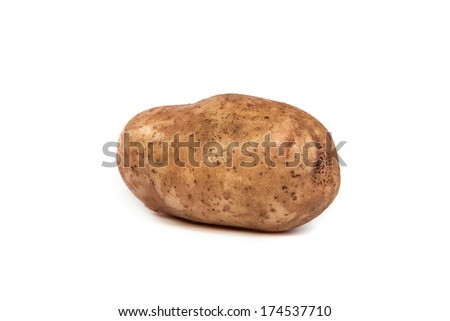 One potato isolated on a white background - stock photo