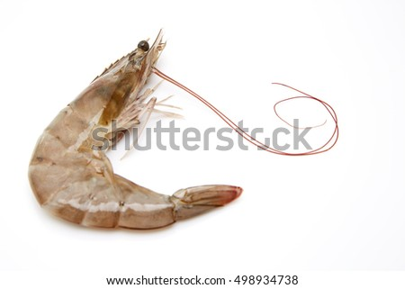 One raw shrimp isolated on white background