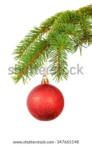 one red ball on the spruce branch - stock photo