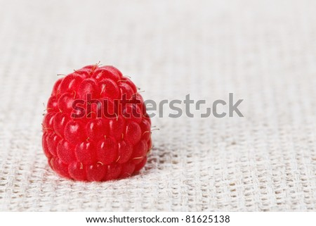 One red ripe raspberry fruit, on gray linen table cloth, macro - stock photo