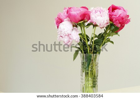 One round cut glass vase with long stem pink and red peony flowers with a light color wall on a beige counter. A beautiful glass vase of pretty peony flowers in a clear glass vase near a white wall. - stock photo
