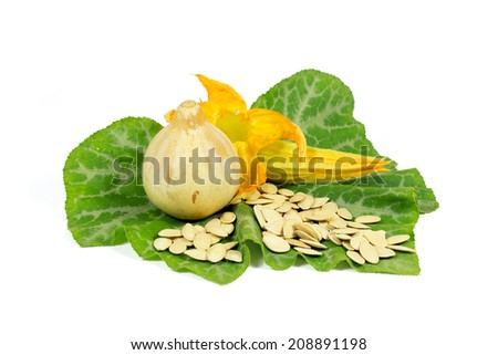 One Small Pumpkin with Yellow Flower and Pumpkin Seeds  on Green Leaf Isolated on White Background