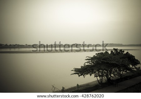 One Tree on the Mekong River