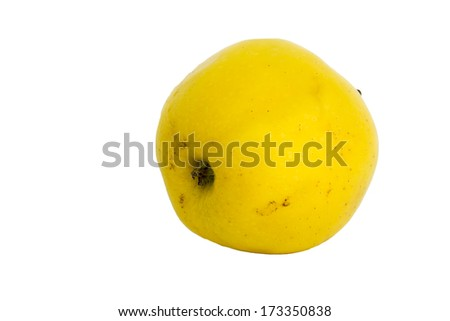 one unwashed, apple on a white background