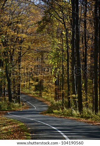 One-Way Autumn Drive- A one-way street on Pierce Stocking Drive, Sleeping Bear Dunes National Lake Shore, Empire, MI - stock photo
