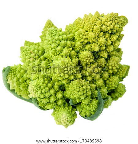One whole Romanesco broccoli (Brassica oleracea) on a white background  - stock photo