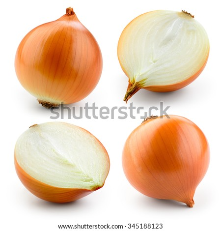 Onion bulb isolated on white. With clipping path. Collection.