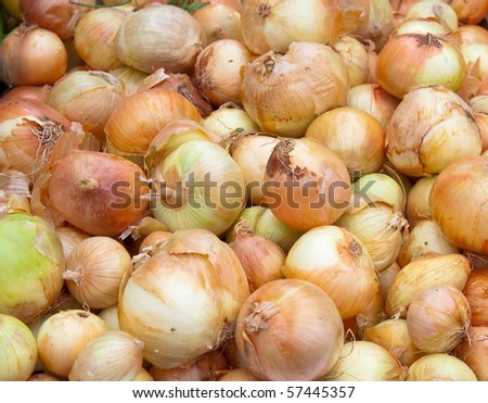Onion pile on the local market