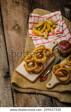 Onion rings, hot dip, french fries and Czech beer, all homemade, all original. - stock photo