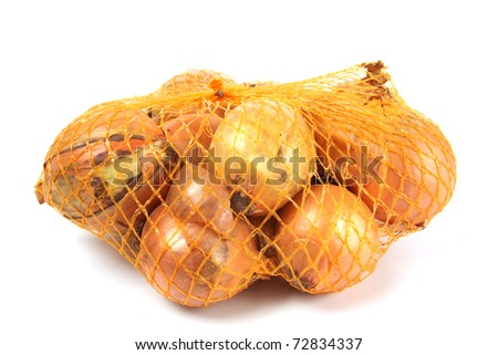 Onions  isolated against a white background