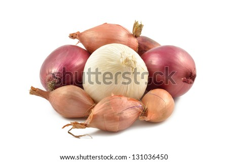Onions, shallots, garlic and white onion on a white background - stock photo