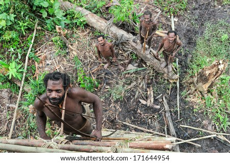 ONNI VILLAGE, NEW GUINEA, INDONESIA - JUNY 24: The Korowai man from a tribe korowai rises to the traditional house on a tree..On June 24, 2012 in Onni Village, New Guinea, Indonesia   - stock photo