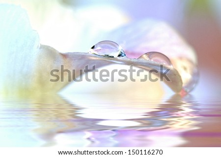 Opalescence water drops and reflections (Macro) - stock photo