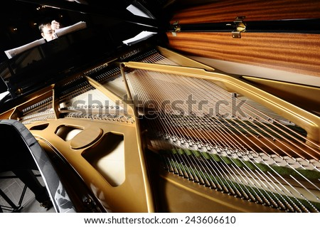 open a piano, strings. - stock photo