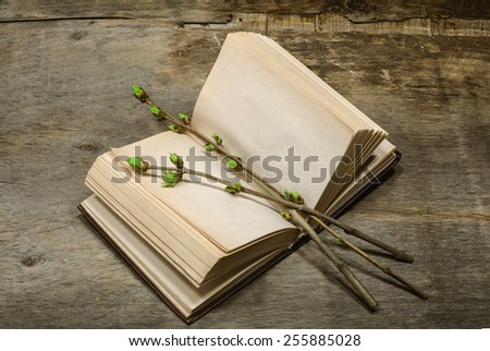 open book and a branch with young green leaves - stock photo