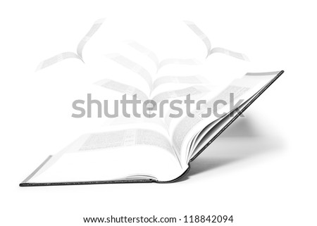 Open book and pages flying - stock photo