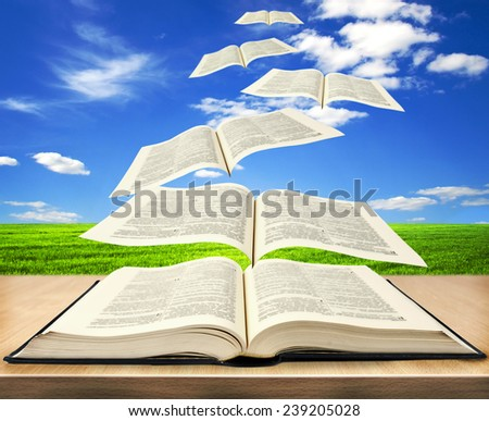 Open book bible and pages flying into skies  - stock photo