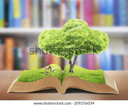 Open book in green grass, nature - stock photo