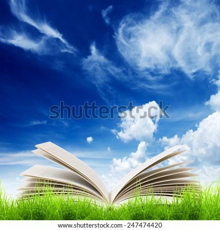 Open book in green grass over bluesky. Magic book - stock photo
