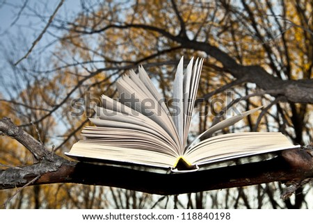 open book lying on a branch on a background of autumn park