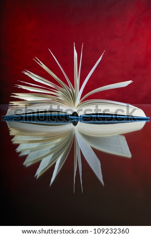 Open book on desk, browse pages, red background - stock photo