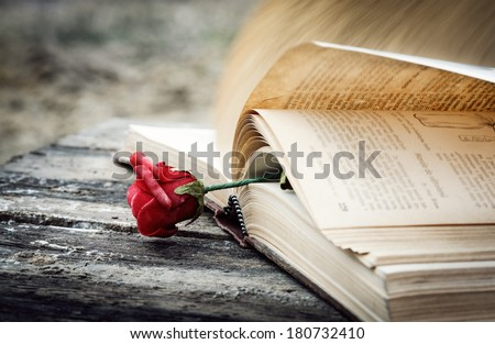 open book on wood desk with rose - stock photo